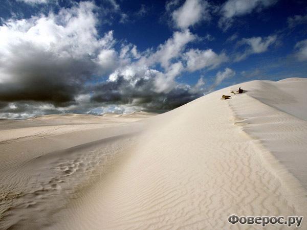 Песчаные дюны, Австралия. Photograph by Nicki Chen