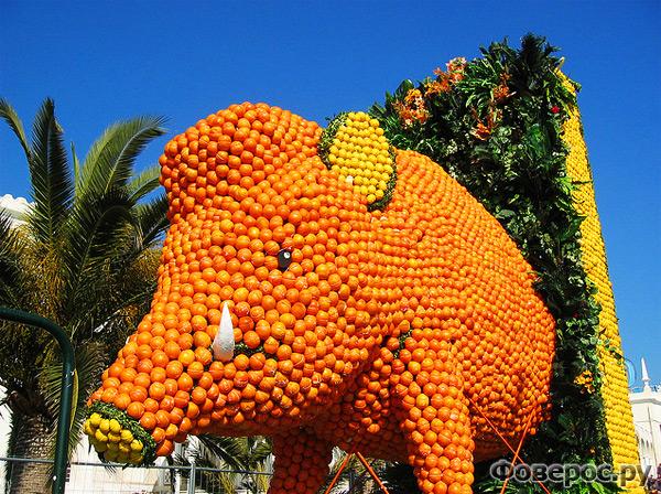 Цитрусовый фестиваль в Ментоне (Франция) - Кабан из апельсинов и лимоно