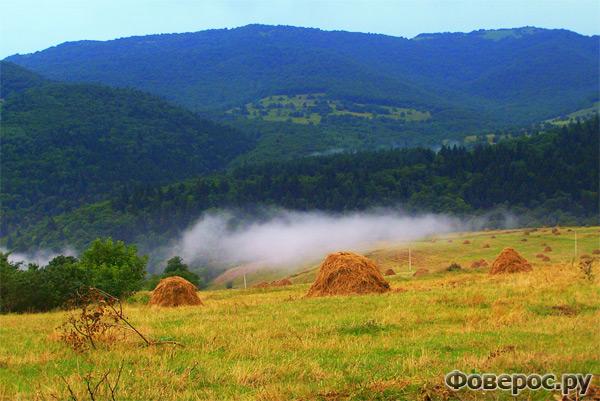 Стоги сена на поле - Манглиси Грузия