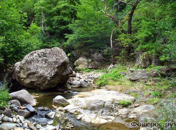 Ручей в роще - Манглиси Грузия