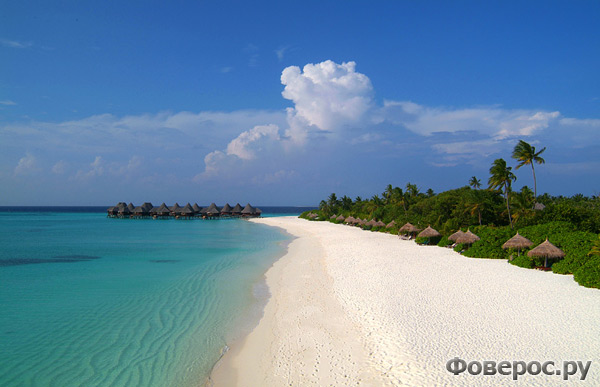 Coco Palm Dhuni Kolhu - Отель на Мальдивах - beach lagoon villa