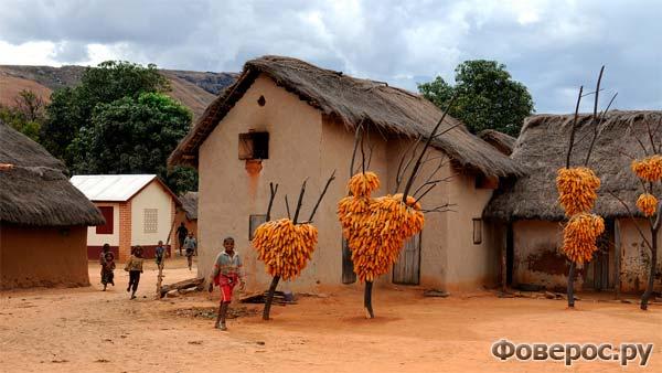 Ребята из поселка Иоси, Мадагаскар