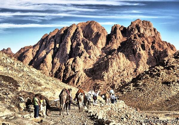 Шарм-эль-Шейх - Гора Синай